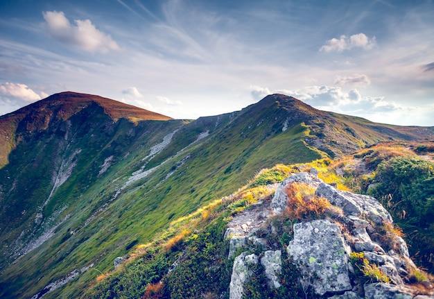 여름 카 르 파 티아 산맥의 아름 다운 산 풍경