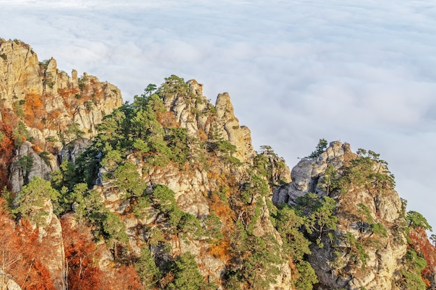 Beautiful mountain landscape with autumn trees on the background of floating clouds, selective focus