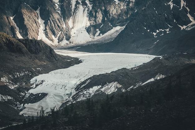 긴 빙하 혀와 눈 덮인 산 벽이 있는 아름다운 산 풍경. 빙하 혀와 높은 산 벽이 있는 아름다운 고산 풍경. 큰 빙하의 배경에 나무 실루엣입니다.