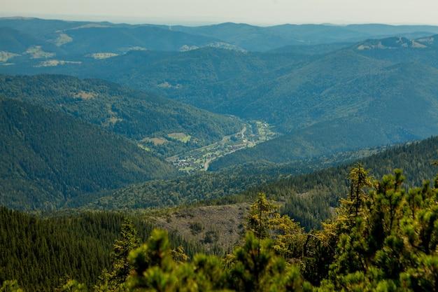 山頂が森と曇り空に覆われた美しい山の風景。ウクライナの山々、ヨーロッパ。