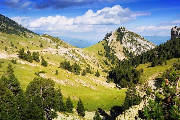 Splendido paesaggio di montagna