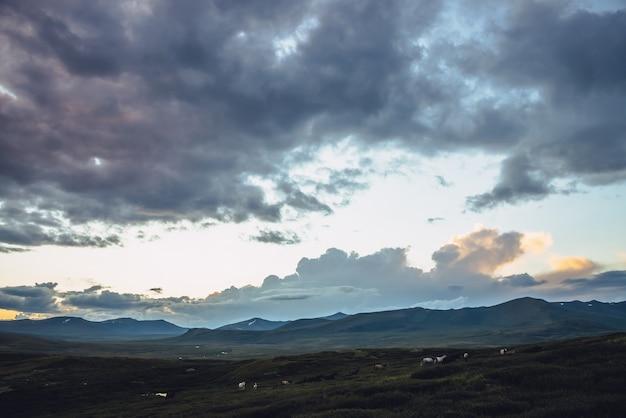 曇り空に馬と金色の夜明けの光の美しい山の風景。夕焼けの空と丘の上の馬の明るい色で風光明媚な山の風景。日の出の日光を照らす金。