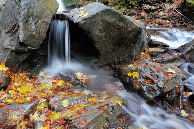 Красивый горный водопад с деревьями, скалами и камнями в осеннем лесу