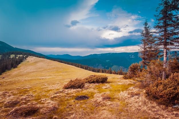 美しい山の風景。夕焼け空。カルパティア、ウクライナヨーロッパ美容の世界