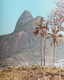 Bellissime montagne e alberi catturati nella spiaggia di copacabana, rio de janeiro