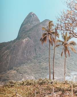 Beautiful mountains and trees captured in copacabana beach, rio de janeiro