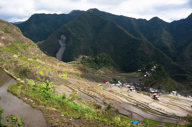 フィリピン諸島の山々にある田んぼのある美しい山々