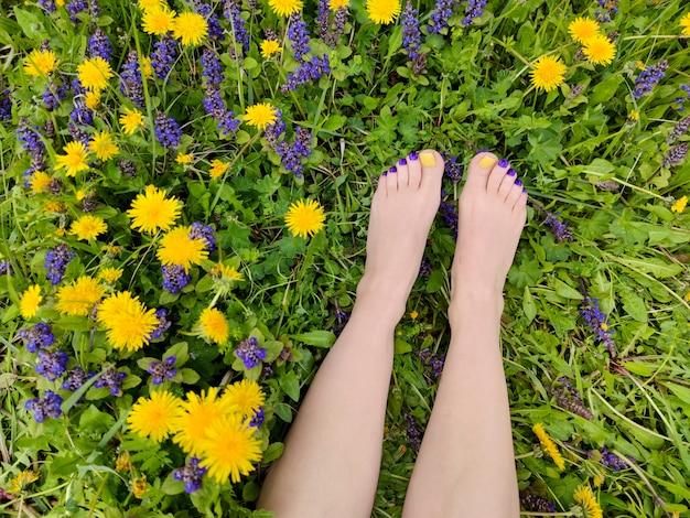 フィールドにさまざまな夏の花を持つ女性の足に美しいマルチカラーの黄色、青、紫のペディキュア。