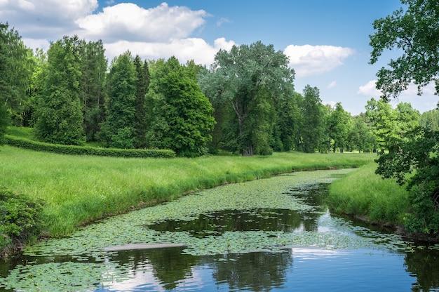 여름 시간에 아름 다운 자연 풍경입니다. 여름 녹색 시골 자연 풍경입니다. 녹색 자연 풍경입니다. 공원에 강이 있는 아름다운 다채로운 여름 봄 자연 풍경