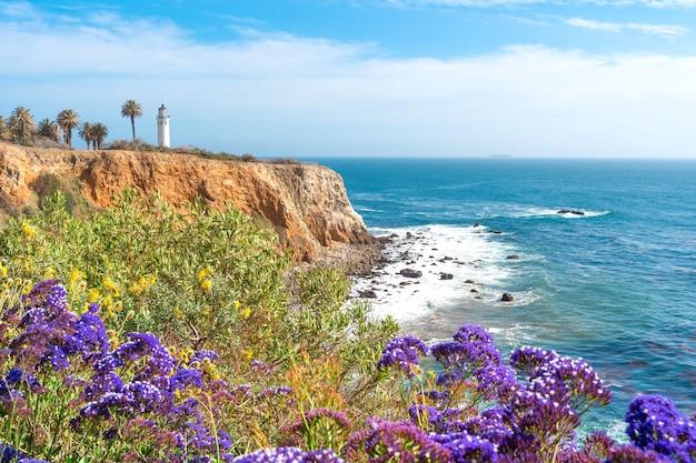 Красивый природный ландшафт на побережье лос-анджелеса у маяка пойнт-висенте