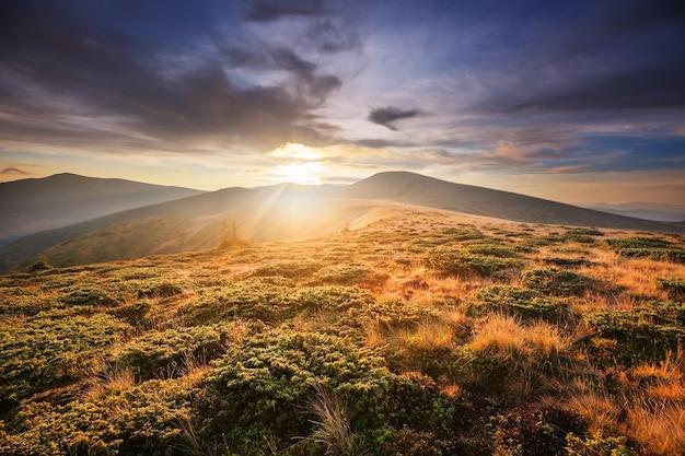 Красивые природные пейзажи карпатских гор