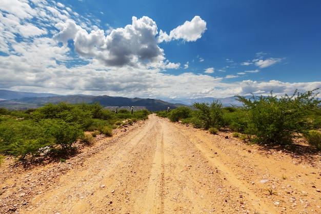 아르헨티나 북부의 아름다운 자연 경관. 선인장 사이 자갈 도로.