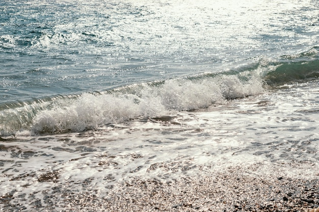 Belle risorse marine naturali