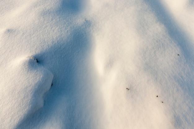 Красивые природные явления зимнего сезона, покрытые почвой и травой толстым слоем снега после циклона со штормами и снегопадами, холодная морозная зимняя погода и снежные заносы.