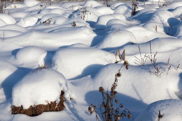 冬の美しい自然現象、嵐と降雪のあるサイクロンの後の厚い雪の層で覆われた土壌と草、寒い凍るような冬の天候と雪の漂流