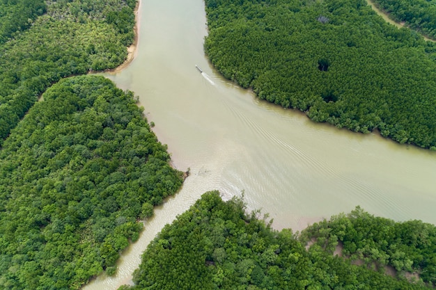 Beautiful natural scenery of landscape view in asia tropical mangrove forest aerial view