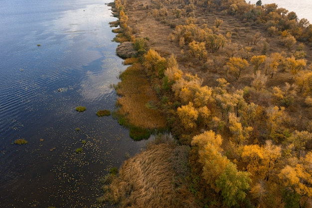 Beautiful natural scenery of river with beautiful autumn trees aerial view drone shot