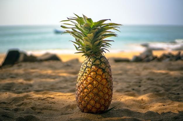 Красивый естественный натюрморт из ананаса на золотом песке в тени пальм на фоне моря.