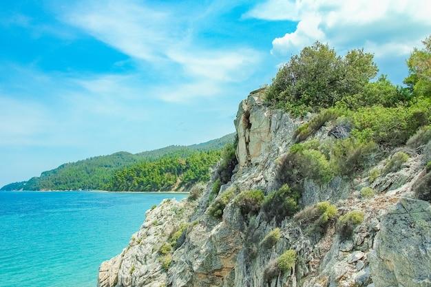 공원 배경에서 자연에 바다로 아름다운 자연