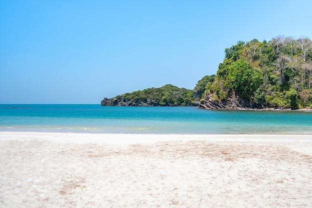 여름에는 햇빛 아래 아름다운 자연 경관 해변과 바다, koh tarutao의 terminalia catappa의 큰 녹색 잎이있는 나무,