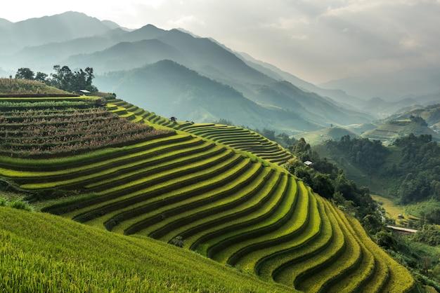 Beautiful nature landscape of paddy field on mountain from mu cang chai, yenbai, vietnam.