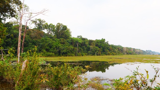 Beautiful nature landscape view of lake pond at neak poan in angkor wat complex, siem reap cambodia.