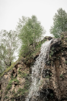 Beautiful nature. mountain waterfall surrounded with trees