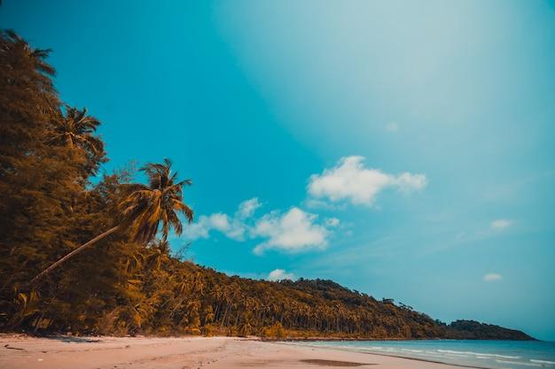 아름다운 자연 열대 해변