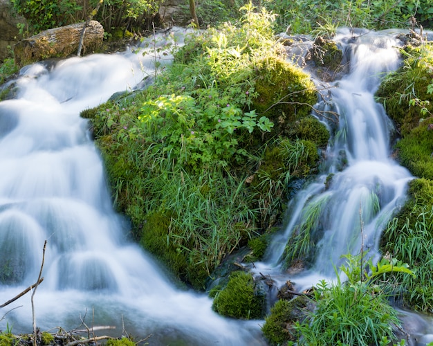 Beautiful nature with flowing water all around