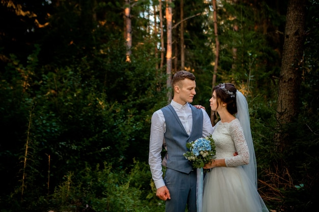 Пара красивых молодоженов прогулки в лесу. молодожены. жених и невеста держатся за руку в сосновом лесу, фото на день святого валентина.