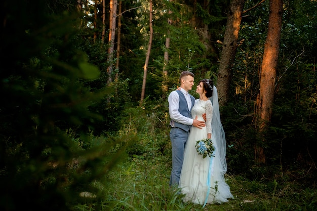 森の中を歩く美しい新婚カップル。ハネムーナー。松の森で手を握って新郎新婦