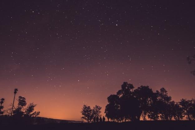 Beautiful nightfall view