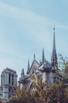 パリの美しいノートルダム大聖堂