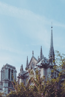 Beautiful notre dame cathedral in paris