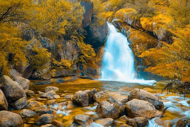 Beautiful orange fall season sight view of small waterfall big stones lake covered with moss plants jungle.jpg.jpg
