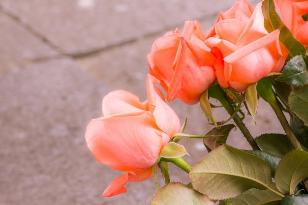 Beautiful orange rose bouquet orange roses are special colors that mean love for family members