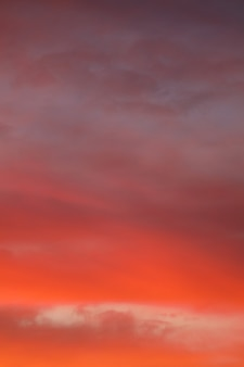 Красивое оранжевое небо вертикальная рамка. фото высокого качества