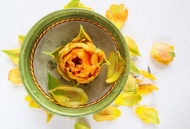 둥근 그릇에 아름다운 오렌지 튤립과 흰색 배경에 노란색 꽃잎