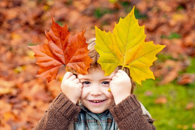Beautiful outdoor autumn portrait of toddler child boy