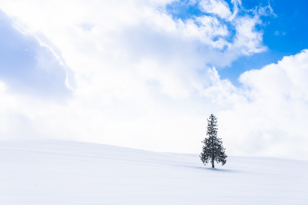 Beautiful outdoor nature landscape with alone christmass tree in snow winter weather season