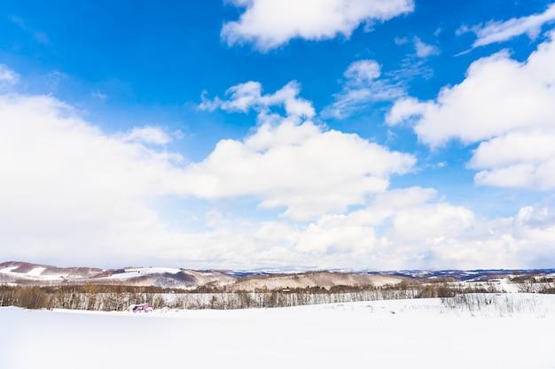 Красивый открытый природный ландшафт с деревом в снежный зимний сезон на хоккайдо