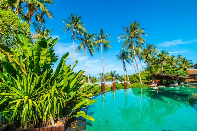 Beautiful outdoor swimming pool with coconut palm tree