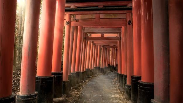Красивый пейзаж панорамы с солнечным светом с красными воротами тори в знаменитом храме фусими инари тайся. солнечные лучи сияют через японскую тропу святилища с традиционной архитектурой