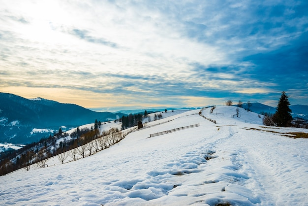 丘と針葉樹林を見下ろすトレイルと山の斜面の美しいパノラマ