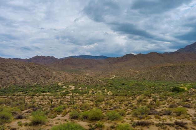 애리조나 피닉스 근처의 아름다운 탁 트인 사막 풍경