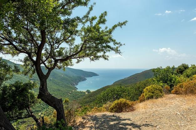 湾の美しいパノラマビュー。絵のように美しい自然の風景
