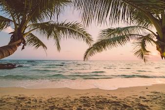 ビーチと海がある美しいパラダイス島