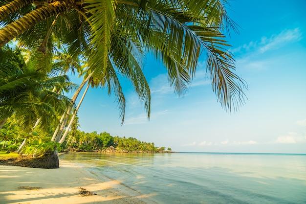 Прекрасный райский остров с пляжем и морем