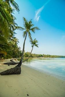 Beautiful paradise island with beach and sea