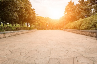 緑豊かな美しい公園コミュニティプラント